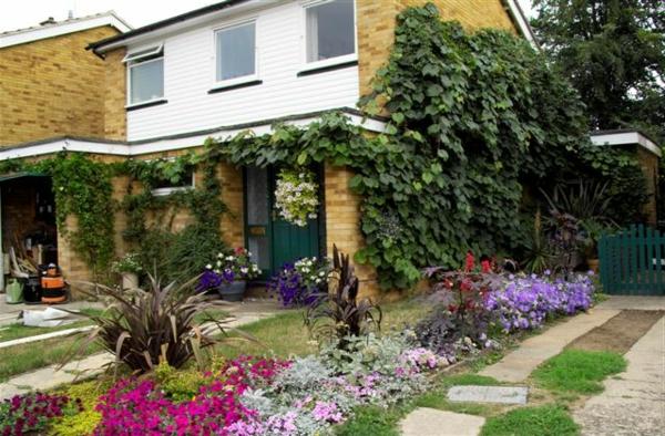 wunderschner kleiner garten neben einem haus - Kleiner Garten