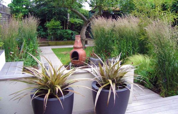 zwei-interessante-topfpflanzen-im-kleinen-garten
