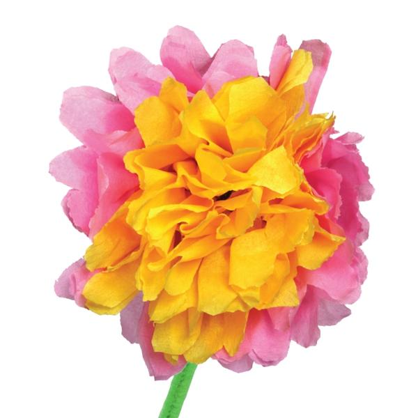 Blumen aus krepppapier 52 s e bilder for Krepppapier blumen