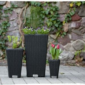 Pflanzkübel für den Innen- und Außenbereich