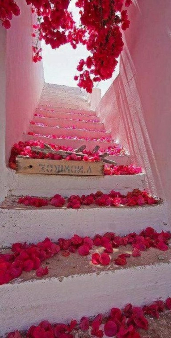 Blumenpfad-in-Santorini