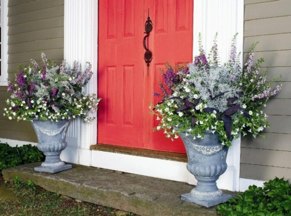 Ideen-für-Blumenkübel-elegant-stil-lila-farbe-rot-tür