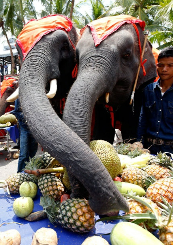 National-Elephant-Day-in Pattaya-Thailand