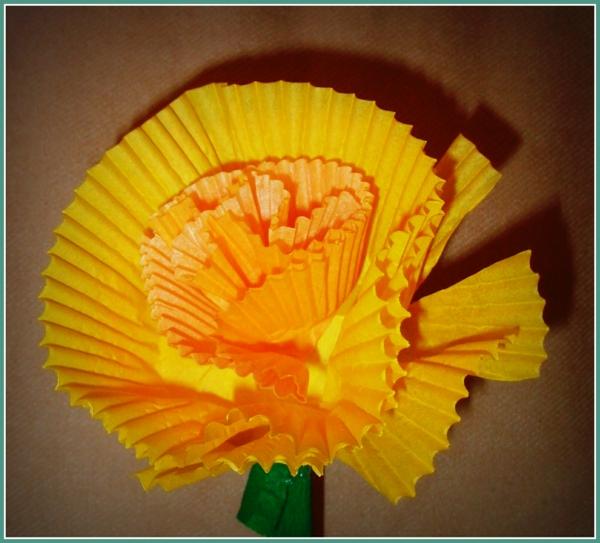 Orangenblume-resized