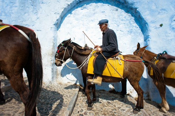 Spaziergang-Mit-Esel-in-Santorini