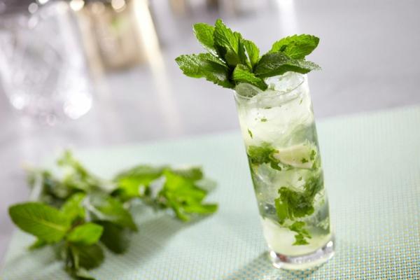 cocktail-dekoration--cocktail-rezept-mojito-cocktail-rezept-bekannte-cocktails--für-den-sommer Mojito Cocktail