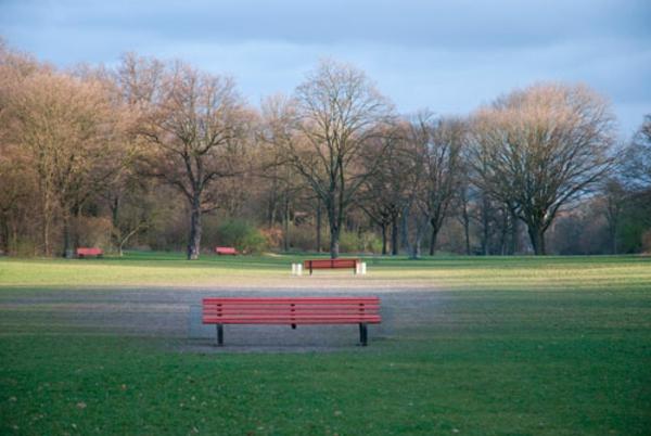 eine-hölzerne-sitztbank-und-grünes-gras-im-park-in-berlin-im-frühling