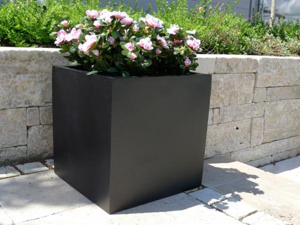 exterior-design-deko-ideen-blumen-blumenkübel-in-schwarz-pflanzkübel-in-schwarz