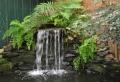 Teich mit Wasserfall: 31 tolle Bilder!