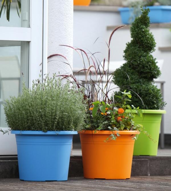 ideen-für-einen-schönen-pflanzkübel--in-verschiedenen-farben-gartengestaltung-ideen-gartengestaltung-beispiele-gartengestaltungsideen