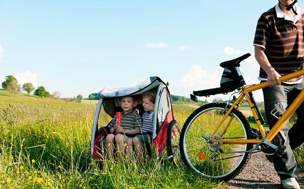 kinder-fahrradanhänger- ausflug-in-der-natur-auf-den-grünen-wiesen-machen