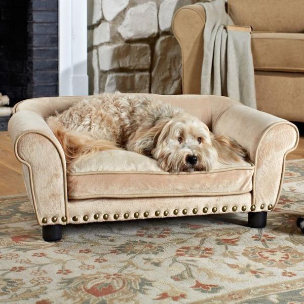 komfortable-schöne-ideen-für-ihren-hund-sofa-hundeaccessoires-hundebett-hundekissen