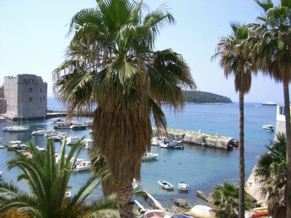 kroatien-urlaubsorte-dubrovnik-reisen-kroatien-urlaub-2015-kroatienurlaub-insel-kroatien-palmen