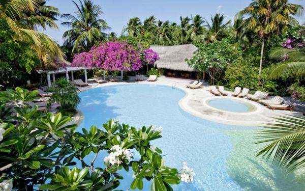 Picknick Island Resort Malediven