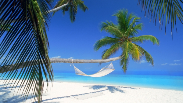 reise-malediven-reise-malediven-urlaub-malediven-reisen- malediven-urlaub-tipps---