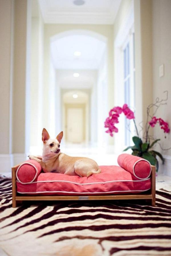 rote-schöne-ideen-für-ihren-hund-sofa-hundeaccessoires-hundebett-hundekissen
