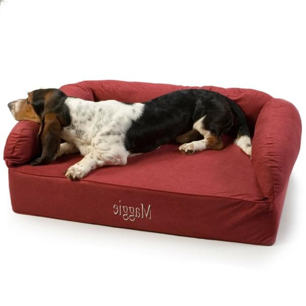 rotes-sofa-schöne-ideen-für-ihren-hund-sofa-hundeaccessoires-hundebett-hundekissen