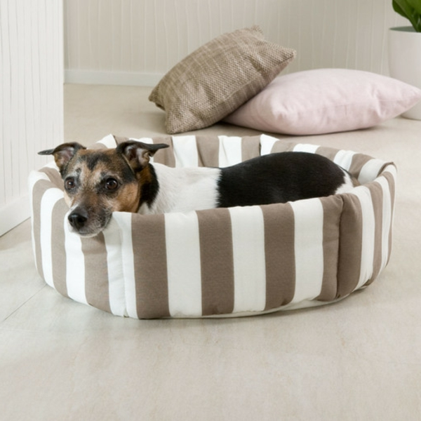 schöne-ideen-für-ihren-hund-sofa-hundeaccessoires-hundebett-hundekissen-gestreift