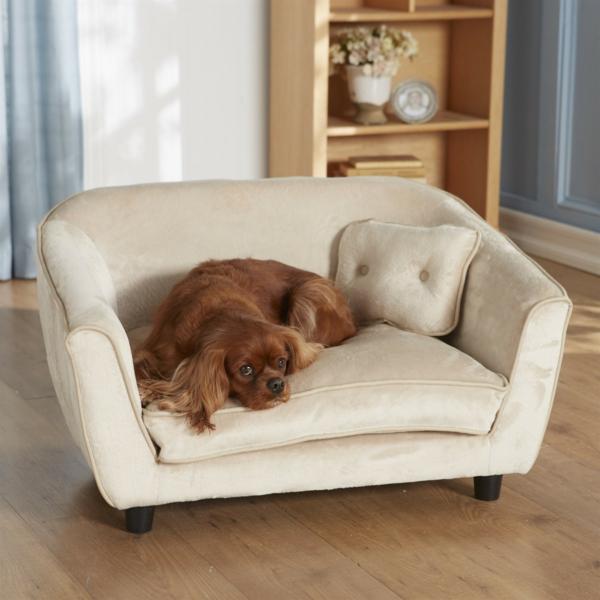 schöne-ideen-für-ihren-hund-sofa-hundeaccessoires-hundebett-hundekissen-weißes-sofa