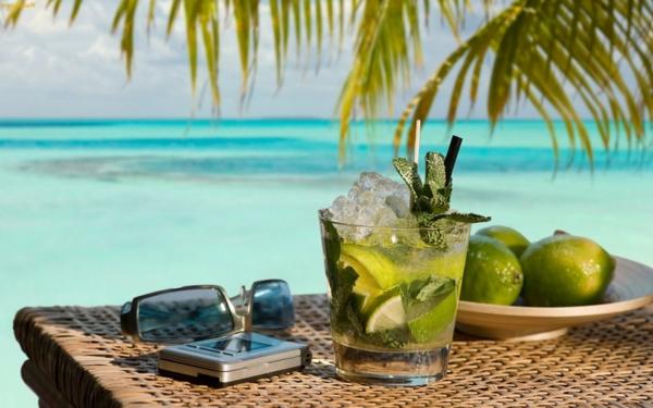 sommer-cocktails-cocktail-dekoration--cocktail-rezept-mojito-cocktail-rezept-bekannte-cocktails