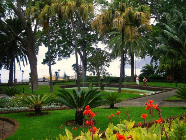 _the-presidential-gardens-in-funchal-madeira-portuga