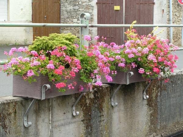 wunderbare-ideen-für-einen-schönen-pflanzkübel-