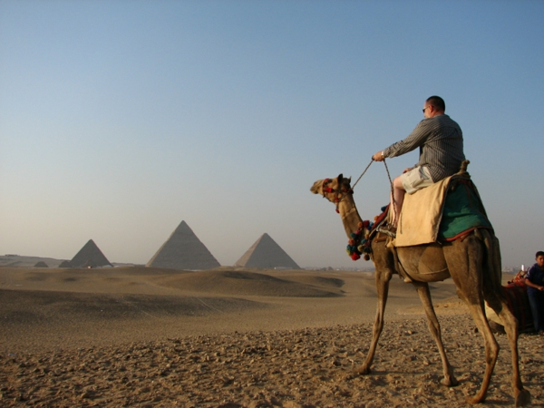 Ägypten-Reise-interessantes-foto-von-einem-kamel- schöner spaziergang