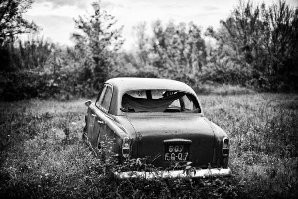 schwarz-weiß-Fotografie-Auto-Wald