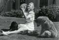 Liebevolle Hunde Rassen – 38 rührendе Bilder