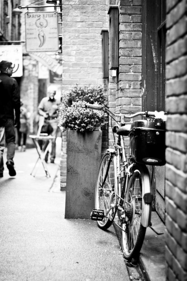 Fahrrad-Blumen-Straße