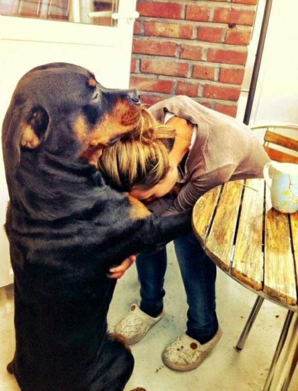 großer-Rottweiler-Frau-Umarmung