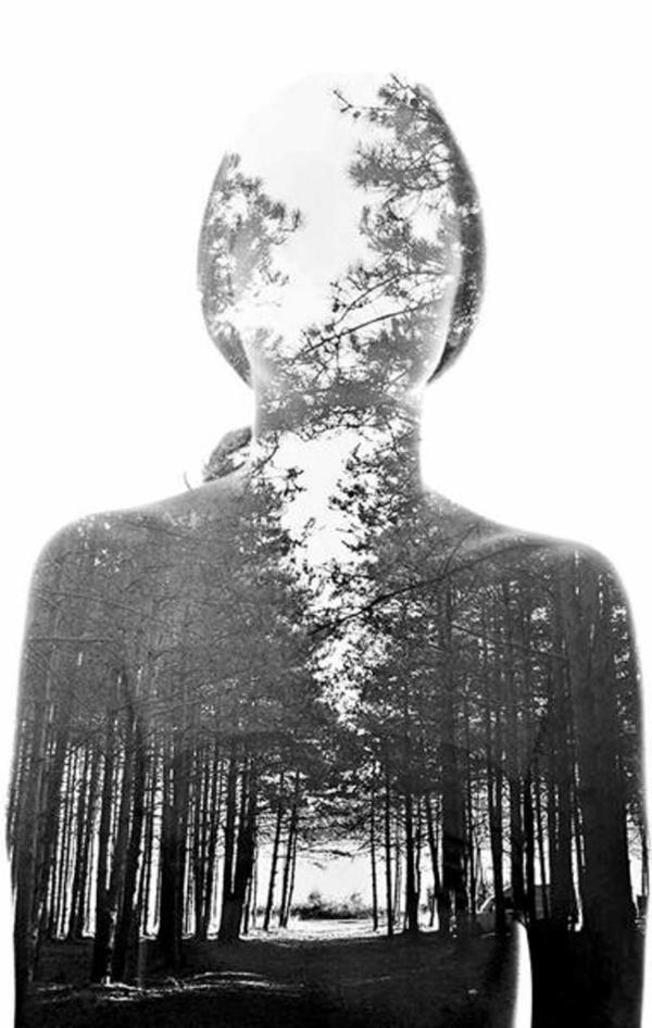 Wald-Silhouette-ohne-Gesicht