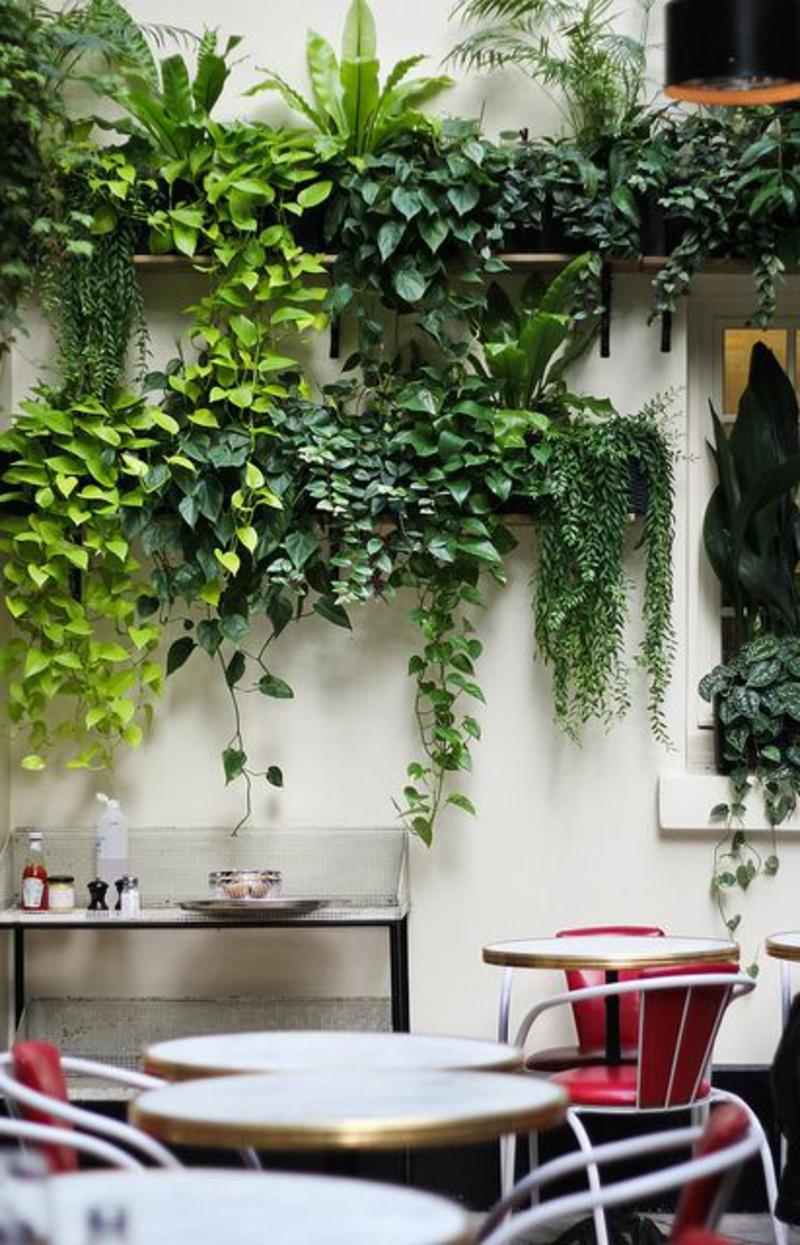 Balkon bepflanzen 60 originelle ideen for Einrichten mit pflanzen