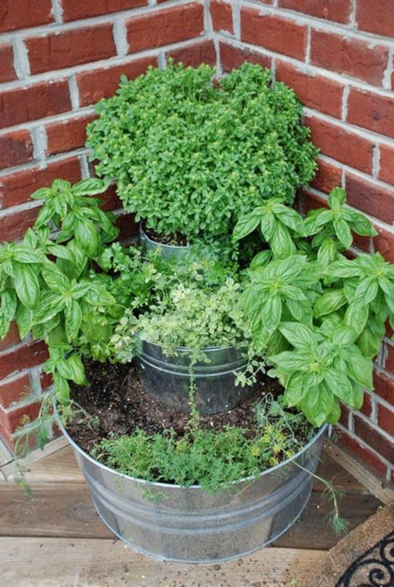balkon-bepflanzen-büsche-an-der-ecke-ziegelwand