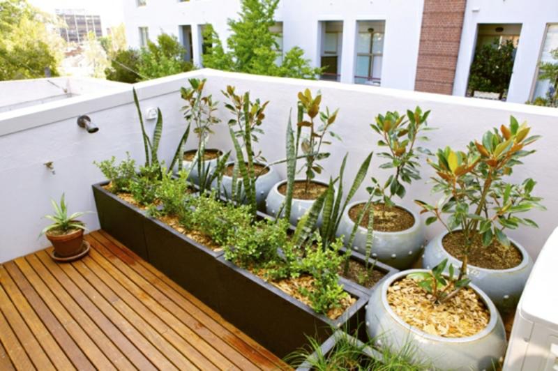 Balkongestaltung Mit Pflanzen Ae03 Startupjobsfa