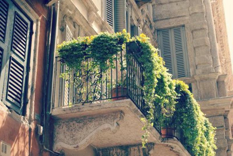 balkon-bepflanzen-interessantes-bild-von-unten-genommen