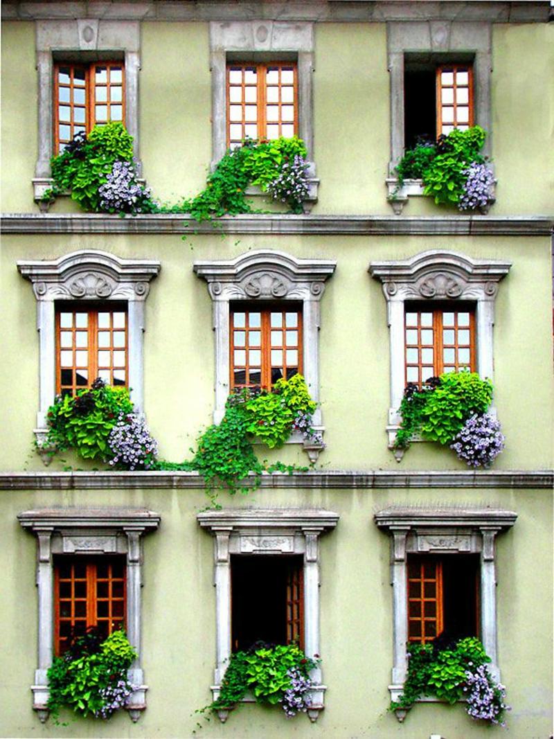 balkon-bepflanzen-schönes-gebäude-auf-drei-etagen