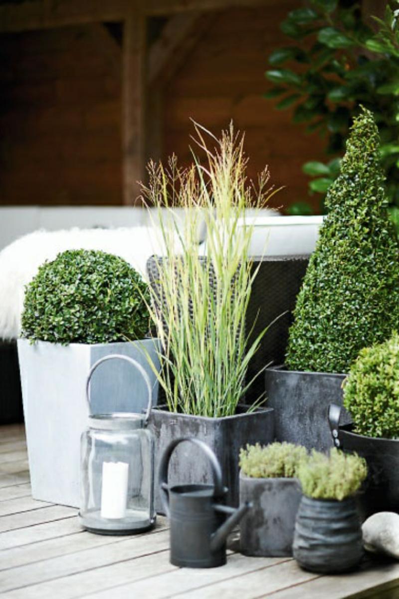 Balkon bepflanzen 60 originelle ideen - Gartenideen pflanzen ...