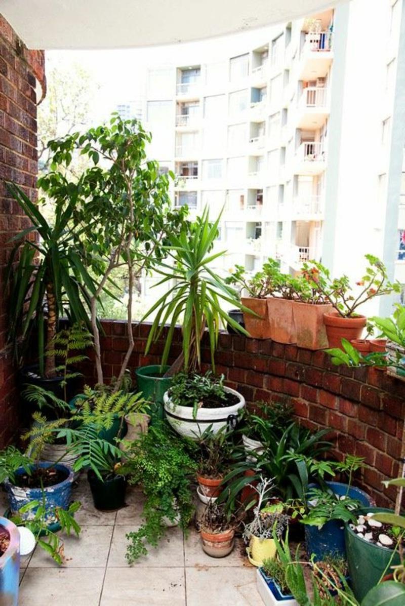 balkon-bepflanzen-super-modernes-aussehen