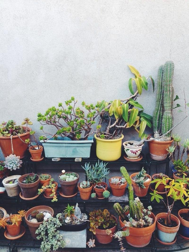 balkon-bepflanzen-viele-bunte-blumentöpfe
