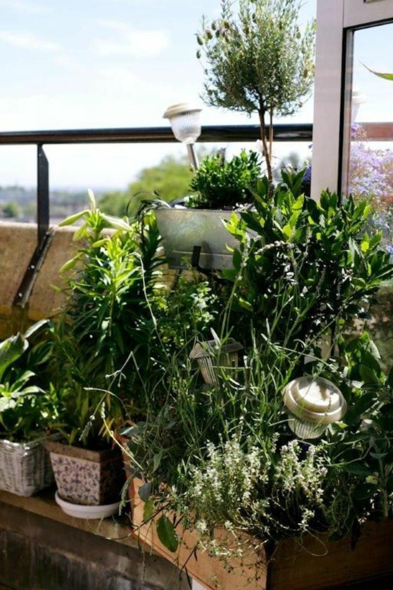 balkon-bepflanzen-viele-schöne-grüne-pflanzen
