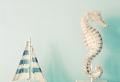 Deko mit Seepferdchen – 37 schöne Ideen!