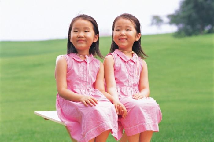 eineiige-zwillinge-rosige-kleider-auf-dem-gras