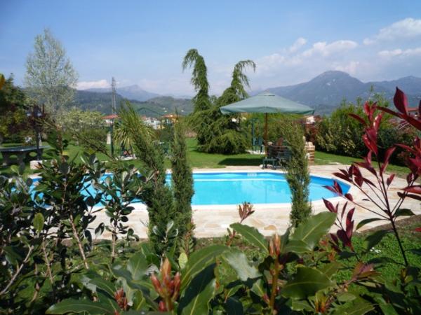 ferienhaus-in-toskana-mit-pool-grüne-pflanzen