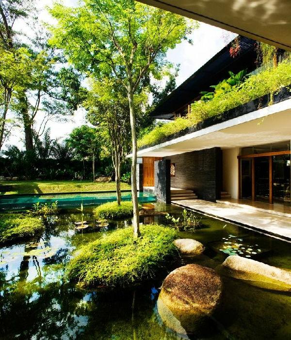garten-pool-coole-grüne-ausstattung - schöne farben