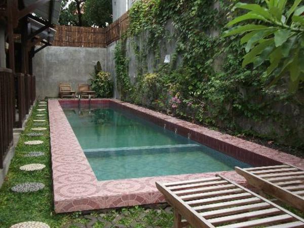 garten-pool-einfach-und-luxuriös - aussehen