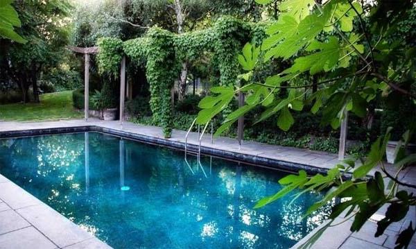 garten-pool-umgeben-von-grünen-pflanzen - exotisch aussehen