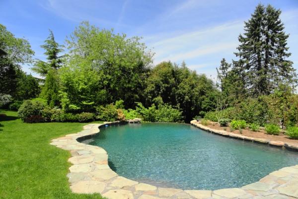 garten-pool-wunderschöne-form - viele grüne pflanzen