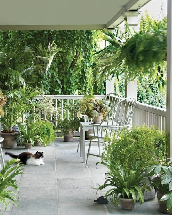 gartenhaus-mit-terrasse-viele-grüne-umgebung