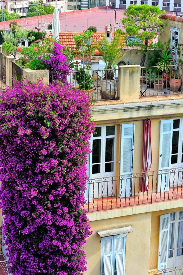 gartenhaus-mit-terrasse-zyklamenfarbige-dekoration